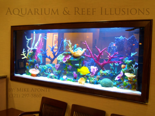aquarium reef illusions aquarium gallery. Black Bedroom Furniture Sets. Home Design Ideas