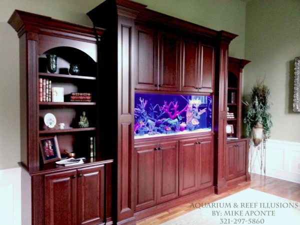 beautiful 250 gallon residential aquarium this aquarium sits between a great room and an office in a gorgeous custom home serving as a great conversation aquarium office 1000 images